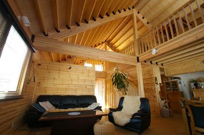 大きな三角屋根の吹抜けと3つのテラスが遊び心をくすぐる平屋の家