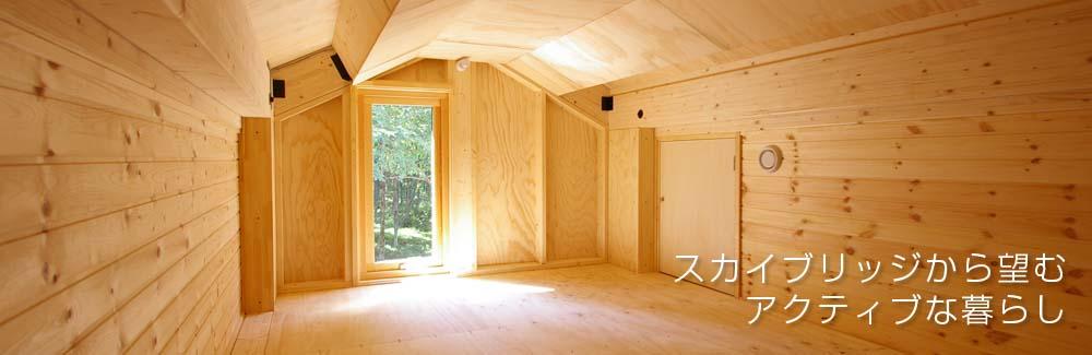 シンプルな平屋にスカイブリッジのある家